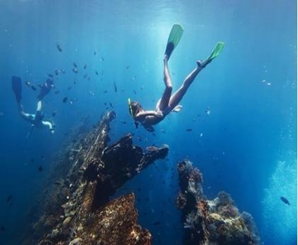 【貝尼達島】兩次體驗潛水一日遊