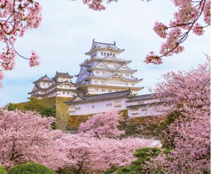 日本自由行專區